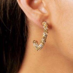 Violet and brooks glitter earrings